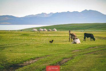 Kyrgyzstan tour, Son Kul