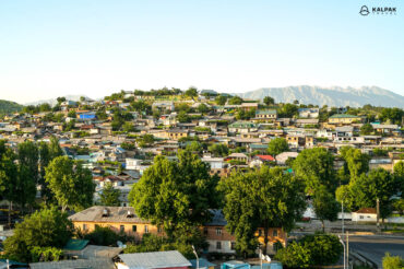 Dushanbe view of houses
