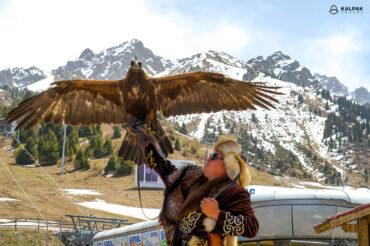 Eagle hunter in Kazakhstan