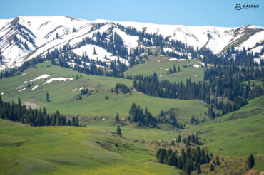 Mountains like in Switzerland
