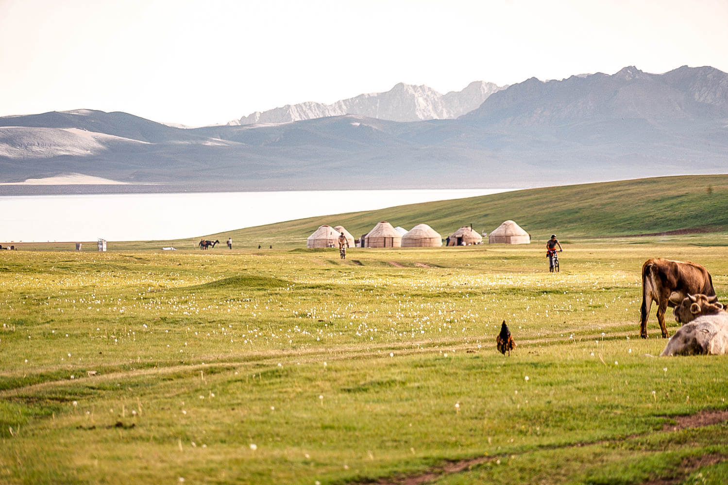 Best of Central Asia Tour - Yurt Camp at Song Kul Lake Kyrgyzstan