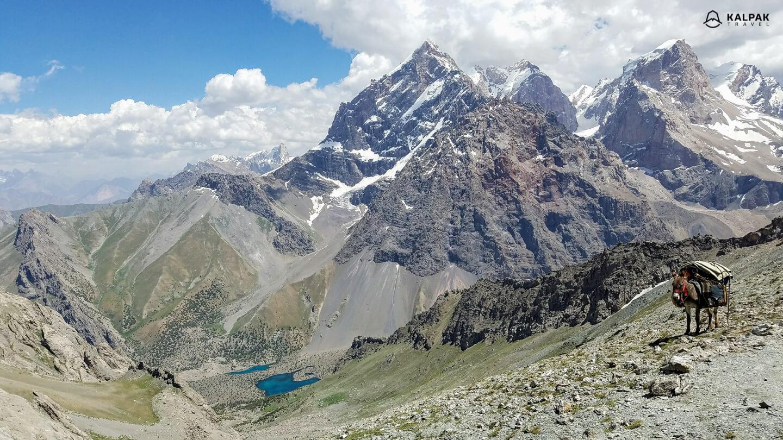 donkey with mountain landscape in Fan mountains