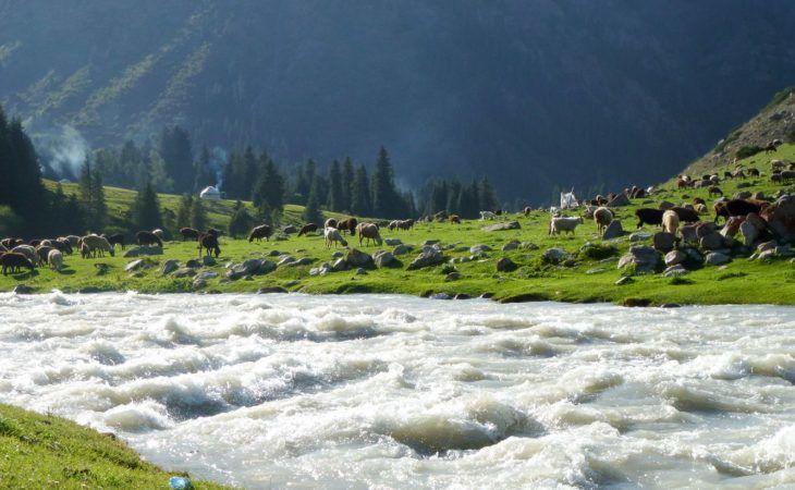 Kyrgzystan Trekking Tour Altyn Arashan River Nature