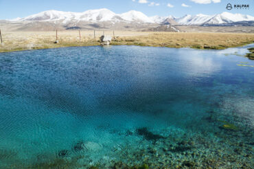 Blue lake with fish on Pamir Highway