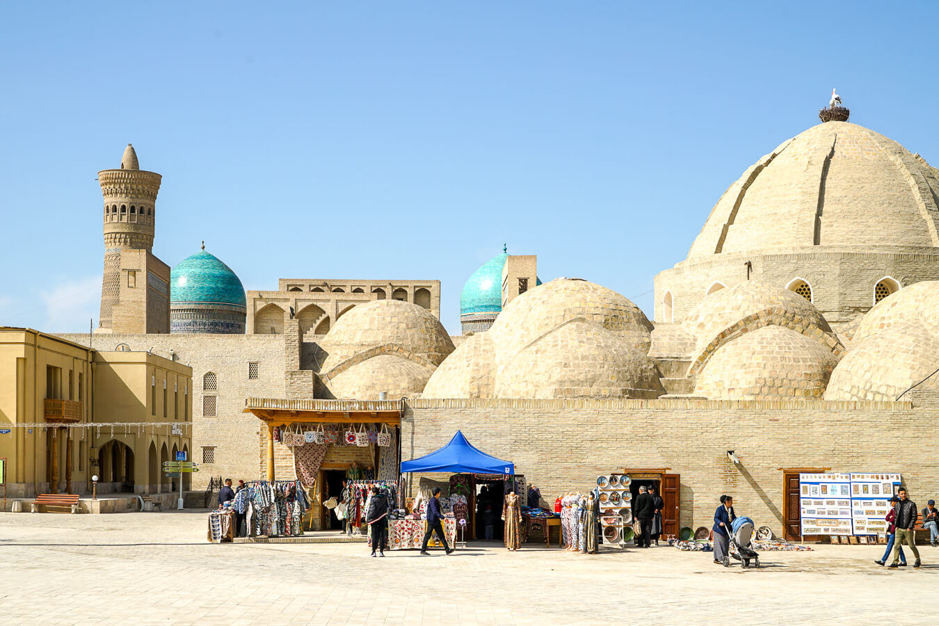 Bukhara domes seen on Uzbekistan tour